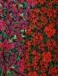 Юбка-миди из вискозы с цветочным узором Finders Keepers  –  Деталь
